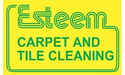 Esteem Carpet and Tile Cleaning